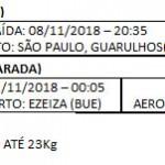 PACOTE BRASILEIROS NA PARADA LGBTIQ DE BUENOS AIRES - DE 14 A 19 DE NOVEMBRO 2018